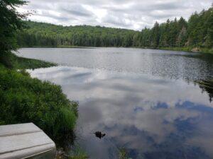 Cow Pond